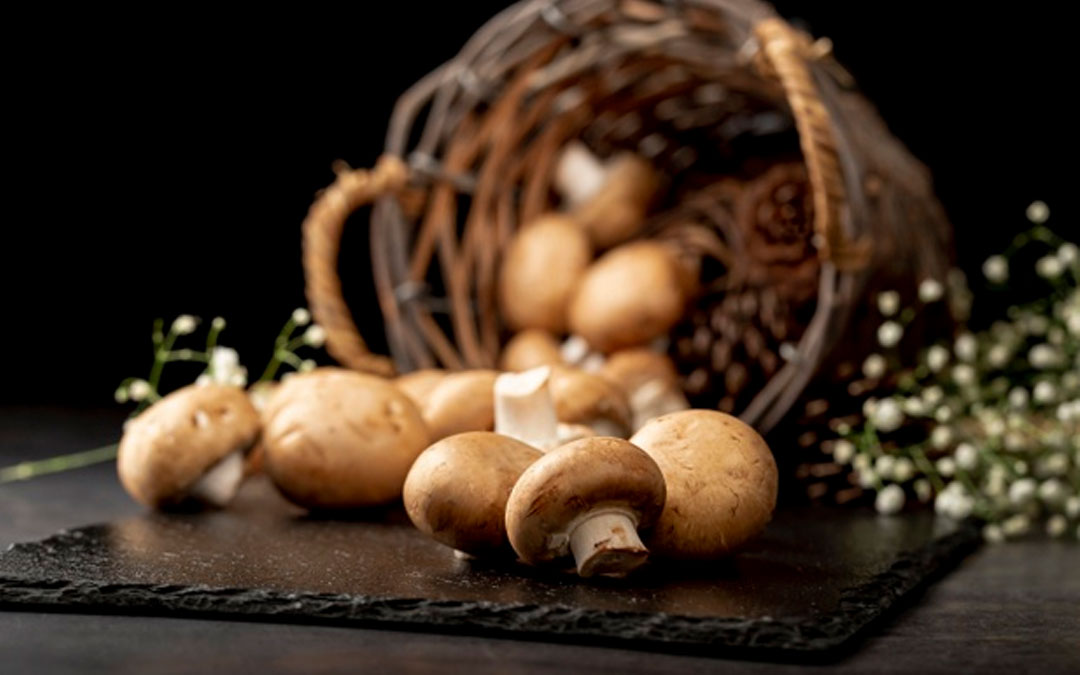 How to rehydrate mushrooms?